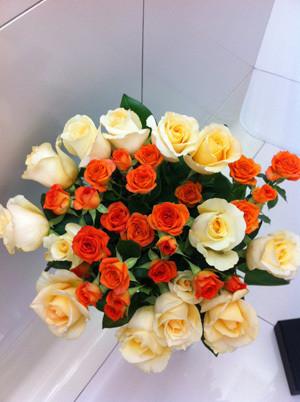復興のバラ